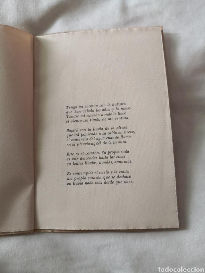 Libros de segunda mano: Libro de poesía. José Corredor. Ocasión donde Amarte. - Foto 3 - 178350286