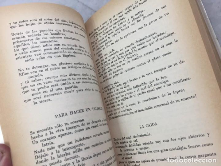 Libros de segunda mano: ANTOLOGÍA DE LA POESÍA VIVA LATINOAMERICANA ALDO PELLEGRINI 1966 SEIX BARRAL - Foto 5 - 181592213