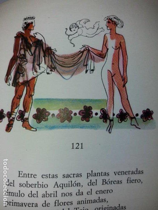 Libros de segunda mano: EXCEPCIONAL CONDE DE VILLAMEDIANA BIBLIOFILOS ILUSTRADO POR MUNOA - Foto 16 - 194356985