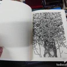 Libros de segunda mano: L'OMBRA DE LES FIGUERES . JOAN MANRESA . DIBUIXOS ANDREU MAIMÓ . 1ª EDICIÓ 2015. FELANITX . MALLORCA. Lote 195178000