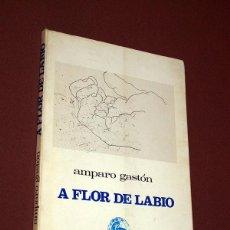 Libros de segunda mano: A FLOR DE LABIO. AMPARO GASTÓN. ED. JAVALAMBRE, 1972. COL. FUENDETODOS 15. ILUSTRA EDUARDO CHILLIDA. Lote 196190978