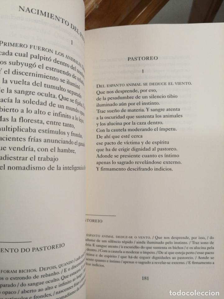 Libros de segunda mano: ANTOLOGÍA POÉTICA. FERNANDO ECHEVARRÍA. - Foto 3 - 214305535