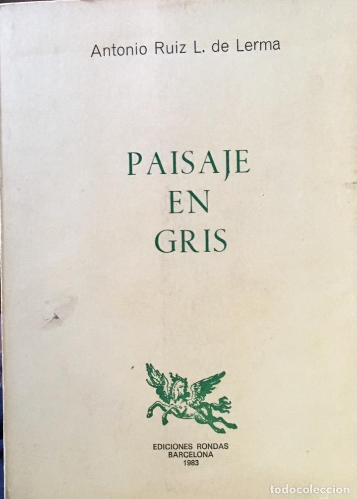 PAISAJE EN GRIS CON ESCRITO AUTOR EN VALDEPEÑAS (Libros de Segunda Mano (posteriores a 1936) - Literatura - Poesía)