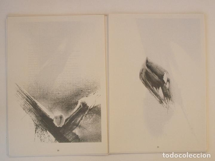 Libros de segunda mano: RAFAEL ALBERTI Y MANUEL RIVERA: POEMAS Y DIBUJOS - CULTURAL ALBACETE - CON DEDICATORIA A PACO RABAL - Foto 9 - 225590210