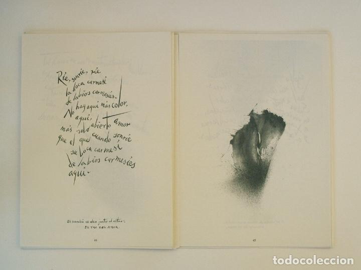 Libros de segunda mano: RAFAEL ALBERTI Y MANUEL RIVERA: POEMAS Y DIBUJOS - CULTURAL ALBACETE - CON DEDICATORIA A PACO RABAL - Foto 11 - 225590210