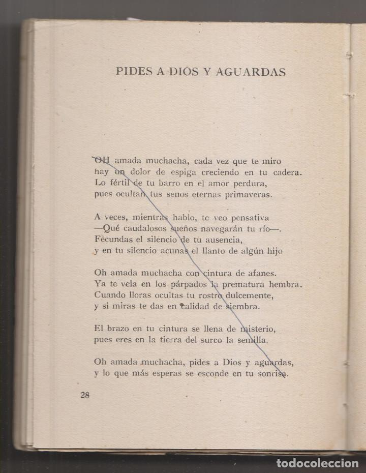 Libros de segunda mano: MANUEL ARCE: SOMBRA DE AYER. MADRID, ADONAIS, 1952. 1ª EDICIÓN. ALGUNAS CORRECCIONES - Foto 2 - 226132020