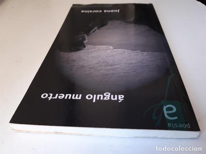 Libros de segunda mano: ANGULO MUERTO Juana Corsina Alfasur Poesia Contemporanea y Clasica 2010 - Foto 6 - 241826465