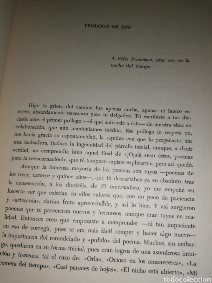 Libros de segunda mano: Cuello de Botella - FÉLIX CASANOVA DE AYALA - FÉLIX FRANCISCO CASANOVA MARTÍN - Dedicado autor - Foto 6 - 253038385
