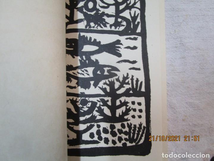 Libros de segunda mano: GALICIA POESIA - MI VIDA ESTÁ CALLADA POEMAS - ALFONSO ALCARAZ - ORENSE 1962 IMP HODIRE +INFO - Foto 13 - 276734373