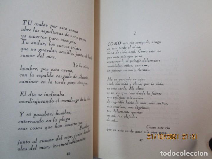 Libros de segunda mano: GALICIA POESIA - MI VIDA ESTÁ CALLADA POEMAS - ALFONSO ALCARAZ - ORENSE 1962 IMP HODIRE +INFO - Foto 14 - 276734373