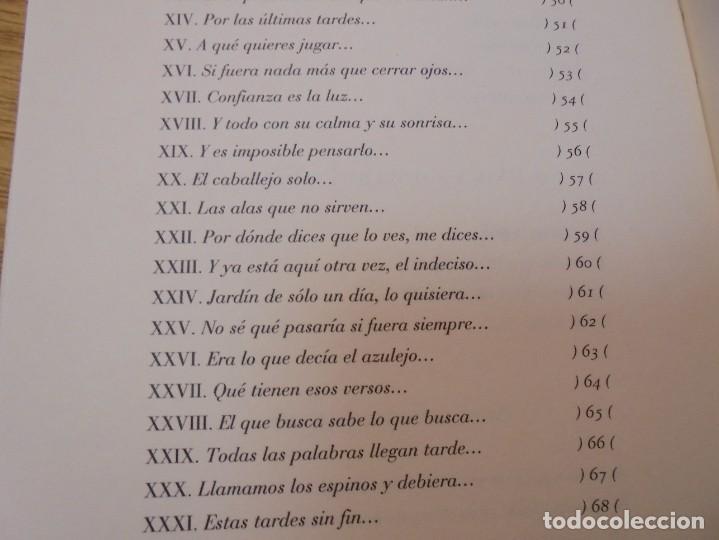 Libros de segunda mano: ENRIQUE ANDRES RUIZ. CON LOS VENCEJOS. DEDICADO POR AUTOR. EDITORIAL PRE-TEXTOS. 2004 - Foto 14 - 288065383