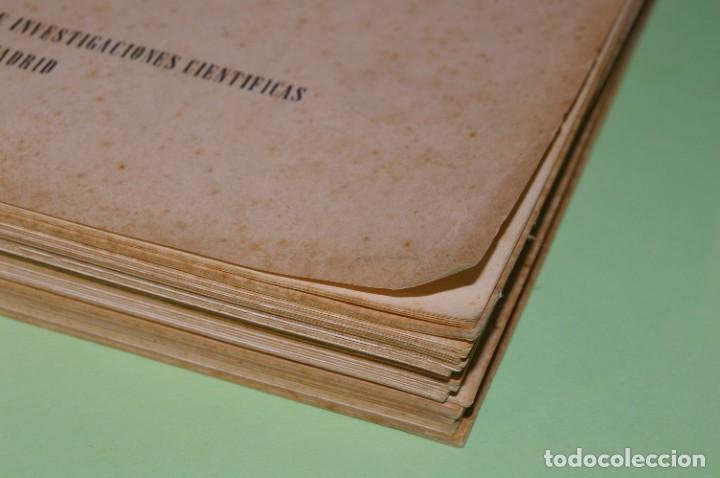 Libros de segunda mano: ACANTO MADRID 1947 REVISTA LITERARIA COLECCION COMPLETA 16 NUMEROS + INDICES DIR. JOSE GARCIA NIETO - Foto 27 - 289595983