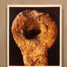 Libros de segunda mano: AZKEN HARRIA (LA PIEDRA FINAL). GABRIEL ARESTI. L. HARAMBURU 1979.. Lote 295981978