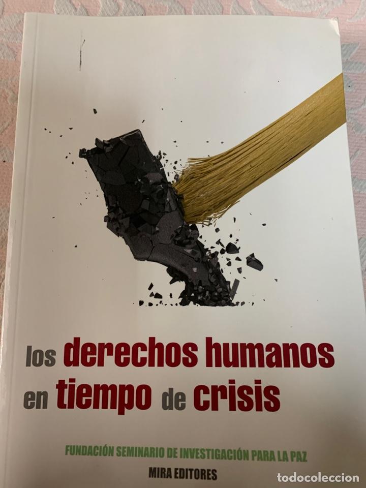 LOS DERECHOS HUMANOS EN TIEMPO DE CRISIS, FUNDACIÓN SEMINARIO DE INVESTIGACIÓN PARA LA PAZ (Libros de Segunda Mano - Pensamiento - Política)