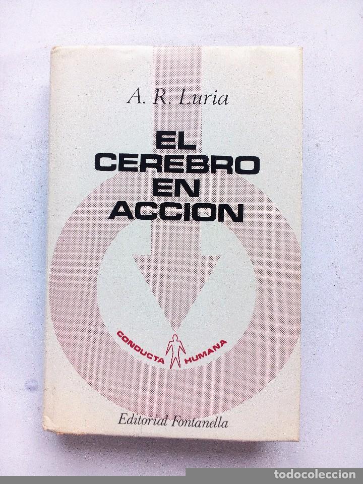 EL CEREBRO EN ACCION ALEKSANDER ROMANOVICH LURIA, ED. FONTANELLA 1974 Nº 21. CONDUCTA HUMANA (Libros de Segunda Mano - Pensamiento - Psicología)