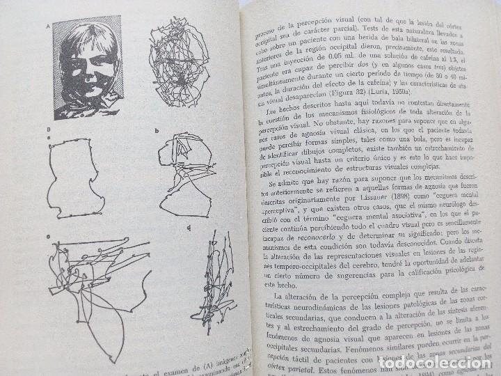 Libros de segunda mano: EL CEREBRO EN ACCION ALEKSANDER ROMANOVICH LURIA, ED. FONTANELLA 1974 Nº 21. CONDUCTA HUMANA - Foto 5 - 119863495