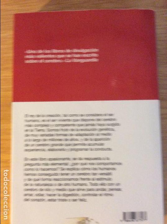 Libros de segunda mano: El cerebro del rey. Nolasc Acarín. Ed. RBA. Barcelona 2010. 3 € envío ordinario. - Foto 2 - 96495571