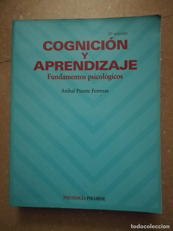 cognicion y aprendizaje anibal puente pdf gratis