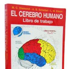 Libros de segunda mano: EL CEREBRO HUMANO. LIBRO DE TRABAJO - DIAMOND, SCHEIBEL Y ELSON. AIREL. Lote 152255738