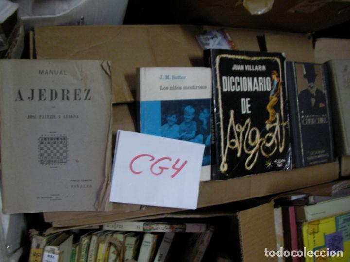 LOS NIÑOS MENTIROSOS - SUTTER - CG4 (Libros de Segunda Mano - Pensamiento - Psicología)
