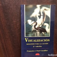 Libros de segunda mano: VISUALIZACIÓN. IMÁGENES PARA LA ACCIÓN. FRANÇOIS J. PAUL CAVALLIER. COMO NUEVO. Lote 175958642