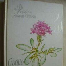 Libros de segunda mano: CASTILLO INTERIOR, O LAS MORADAS. SANTA TERESA DE JESÚS. 2007. Lote 45256175