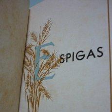 Libros de segunda mano: ESPIGAS. OBISPADO DE AVILA. 1931. 331 PÁGINAS. Lote 99229791