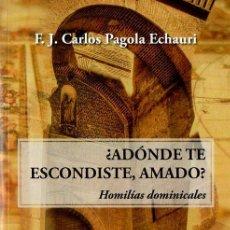 Libros de segunda mano: CARLOS PAGOLA ECHARRI : ¿ADÓNDE TE ESCONDISTE, AMADO? HOMILÍAS DOMINICALES (CLARETIANAS, 2012). Lote 111025767