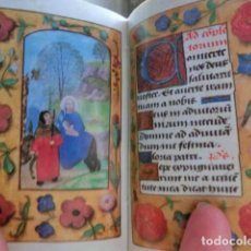 Libros de segunda mano: FACSÍMIL ÍNTEGRO DEL LIBRO DE HORAS DE PANNONHALMA (S. XV) + ESTUDIO EN CASTELLANO. Lote 111574979