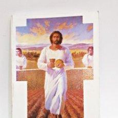 Libros de segunda mano: LIBRO TE SEGUIMOS SEÑOR,MENSAJE DE JESUS A SOR BENIGNA CONSOLATA (6ªEDICION). Lote 130030271