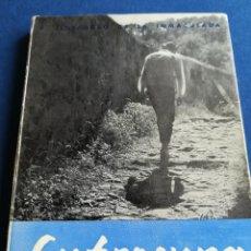 Libros de segunda mano: EUFROSYNA LA SANTA DISFRAZADA... P. ILDEFONSO DE LA INMACULADA. EDICIONES MEDITERRANEO, VALENCIA. Lote 136837792