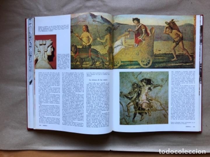 Libros de segunda mano: LAS GRANDES RELIGIONES (8 TOMOS, COMPLETA). PLAZA & JANÉS EDITORES 1965. - Foto 7 - 147030434