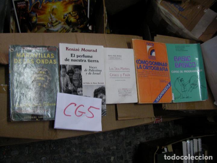 LOS SANTOS MARTIRES CIRIACO Y PAULA - CG5 (Libros de Segunda Mano - Religión)