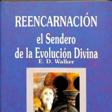 Libros de segunda mano: REENCARNACIÓN. Lote 162747572