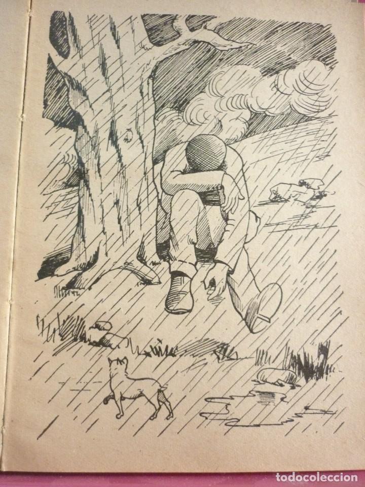 Libros de segunda mano: EL PEREGRINO. JUAN VALL HOMS. 1957 - Foto 3 - 163607394