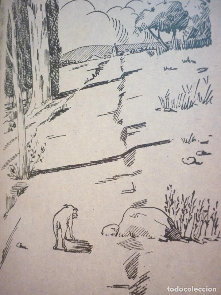 Libros de segunda mano: EL PEREGRINO. JUAN VALL HOMS. 1957 - Foto 4 - 163607394
