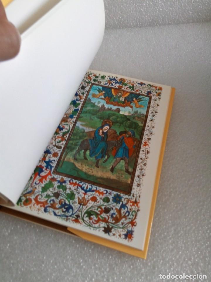Libros de segunda mano: LIBRO DE HORAS DE ISABEL LA CATÓLICA / MATILDE LÓPEZ SERRANO - Foto 5 - 170659135