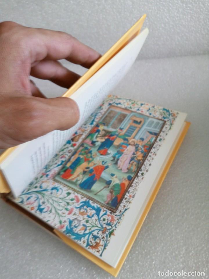 Libros de segunda mano: LIBRO DE HORAS DE ISABEL LA CATÓLICA / MATILDE LÓPEZ SERRANO - Foto 6 - 170659135