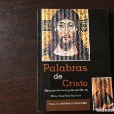 Libros de segunda mano: PALABRAS DE CRISTO. MENSAJE DEL EVANGELIO DE MATEO. PAUL MORI KAZUHIRO. Lote 173824088