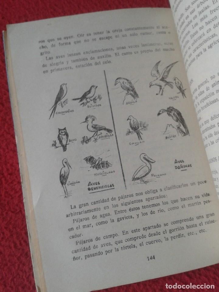 Libros de segunda mano: EL LIBRO GRAN CAMPAÑA DE VERANO 1956, 208 PÁGINAS EDITADO POR LA DELEGACIÓN NACIONAL DE ASPIRANTES - Foto 5 - 179376310