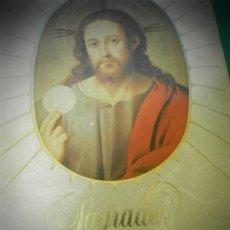 Libros de segunda mano: LA SAGRADA BIBLIA 1983 TRADUCCION DE LA VULGATA LATINA POR EL P.PETISCO.. Lote 195290713