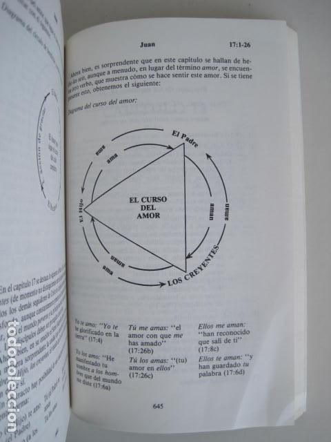 Libros de segunda mano: COMENTARIO DEL NUEVO TESTAMENTO. GUILLERMO HENDRIKSEN. SAN JUAN, MATEO, GALATAS, EFESIOS, FILIPENSES - Foto 9 - 200036688