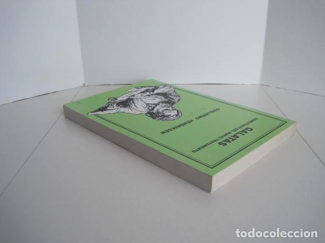 Libros de segunda mano: COMENTARIO DEL NUEVO TESTAMENTO. GUILLERMO HENDRIKSEN. SAN JUAN, MATEO, GALATAS, EFESIOS, FILIPENSES - Foto 20 - 200036688