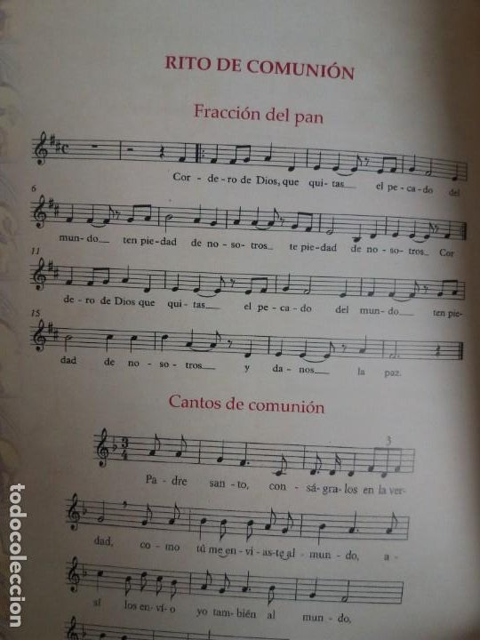 Libros de segunda mano: CURIOSO ORDENACION EPISCOPAL DE UN OBISPO - Foto 34 - 200345520