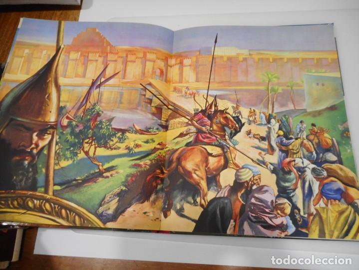 Libros de segunda mano: La Biblia contadas a todos Q3191T - Foto 3 - 221278226