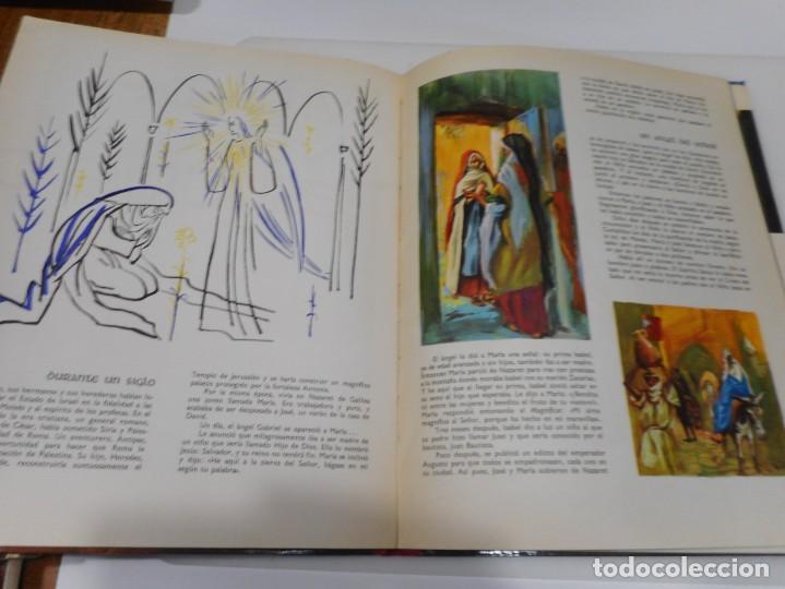 Libros de segunda mano: La Biblia contadas a todos Q3191T - Foto 4 - 221278226