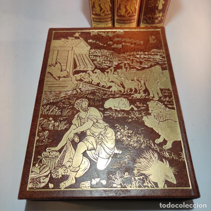 Libros de segunda mano: El antiguo y nuevo testamento. Traducido de la Vulgata por D. Feliz Torres Amat. Ed. Bibliófilos. - Foto 15 - 236549235