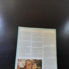 Libros de segunda mano: LAS BODAS DE CANA. Lote 264855994