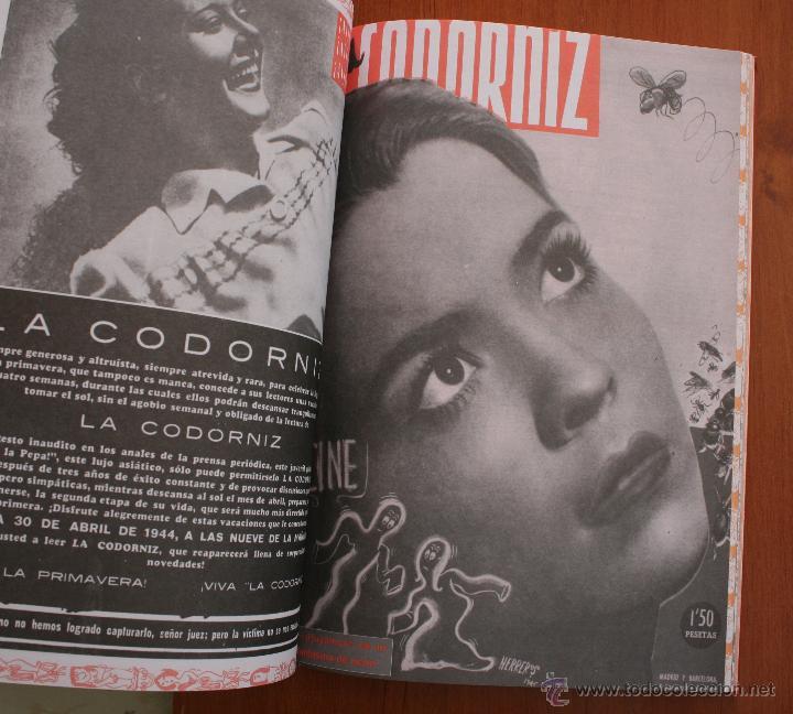 Libros de segunda mano: LA CODORNIZ LA REVISTA MAS AUDAZ PARA EL LECTOR MAS INTELIGENTE ANTOLOGIA 1941-1978 - Foto 9 - 53537494