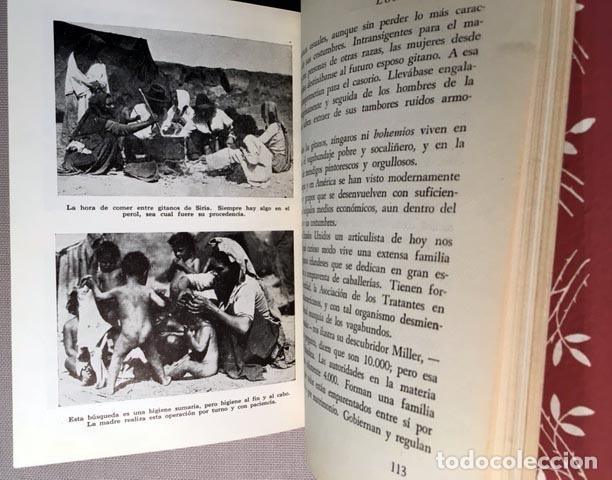 CIMORRA: LOS GITANOS. (1944. 1ª ED.) LÁMINAS FOTOGRÁFICAS. CARTONÉ (Libros de Segunda Mano - Pensamiento - Sociología)